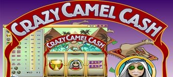 Crazy Camel Cash Online Slot